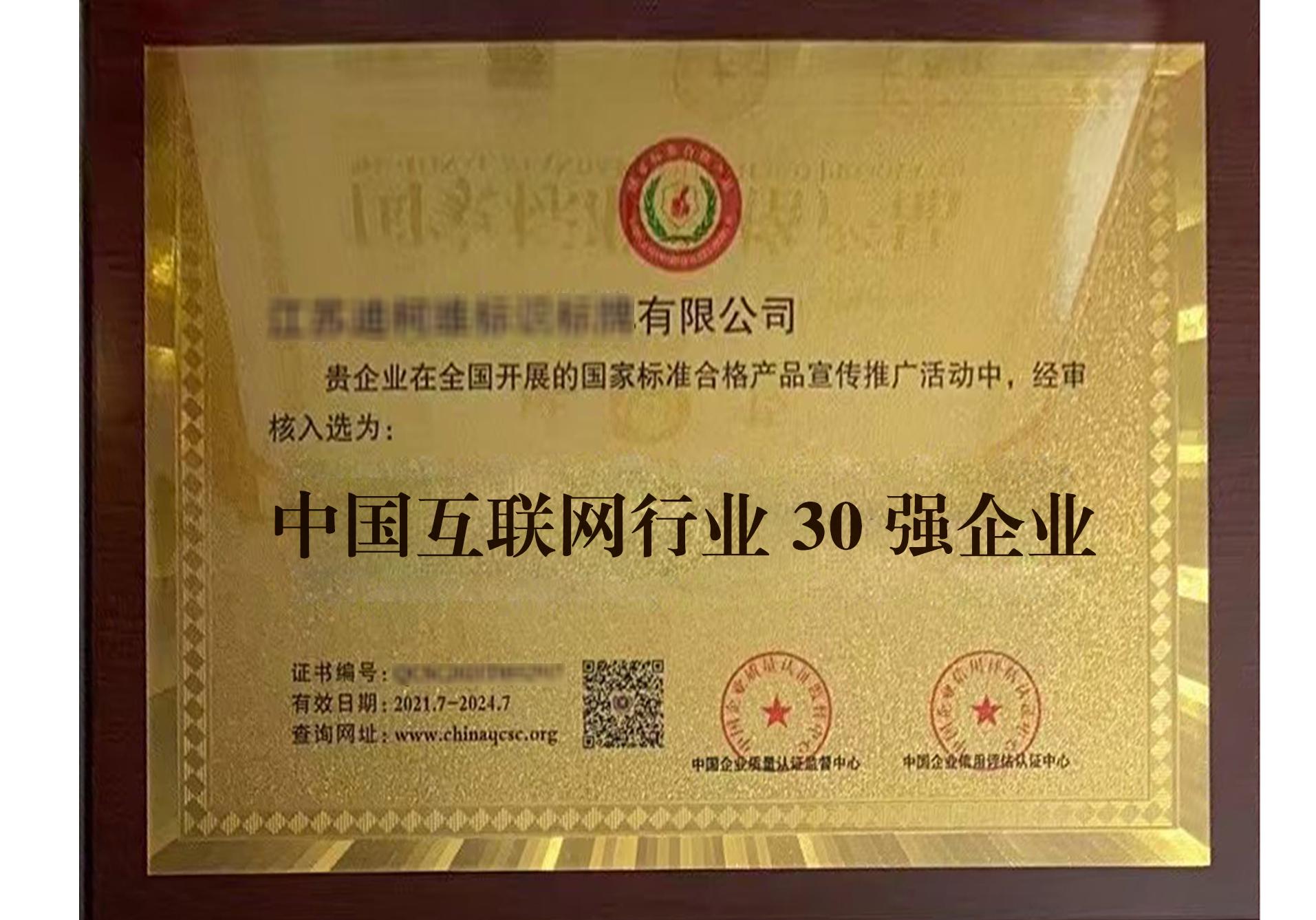 中国互联网行业 30 强企业